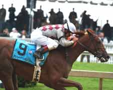 Funny Cide at Preakness Stakes